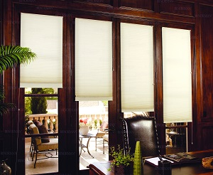 Interior Solar Screens In Tampa Fl Window Treatments