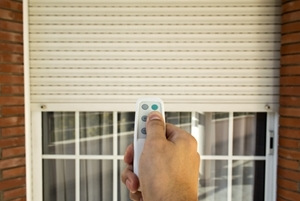 motorization tampa fl